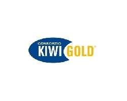 logo-kiwi-gold